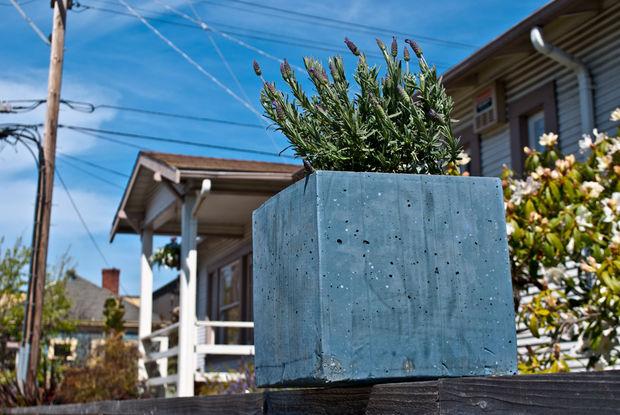 бетонный горшок вместе с цветком