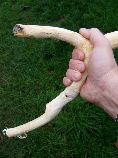 обтесанная ветка в руке
