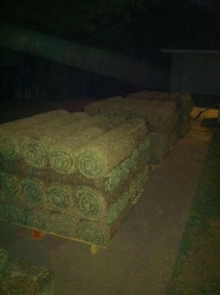 Нарезанная трава в рулонах