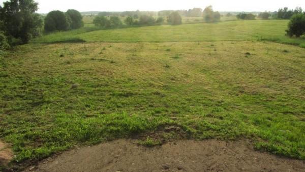 На земле скошенная трава