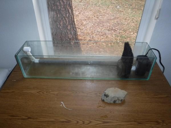 Аквариум с водой и установленным фильтром