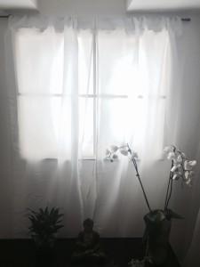 Фальш окно и цветок