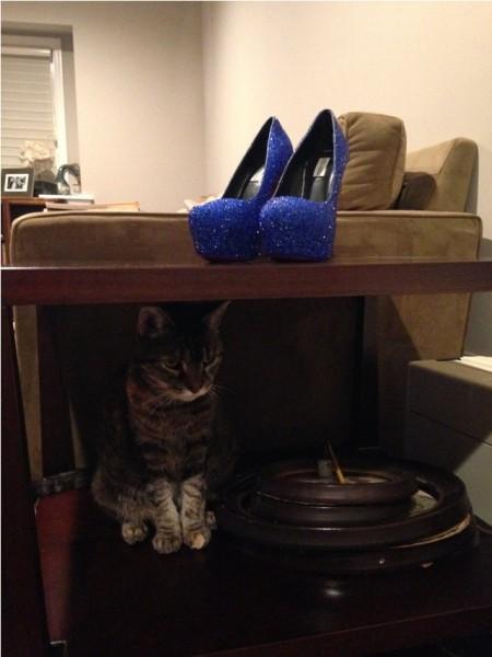 На столе туфли со стразамт