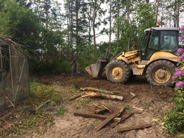 Человек на тракторе расчищает земельный участок