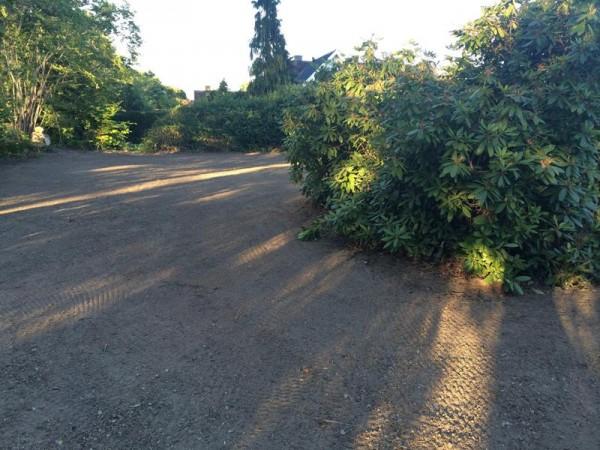 Земля в саду после посадки травы