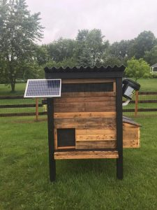 Курятник с солнечной батареей и ведро с кормом