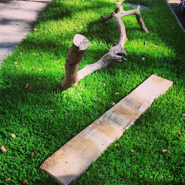 Ветка и доска лежит на траве