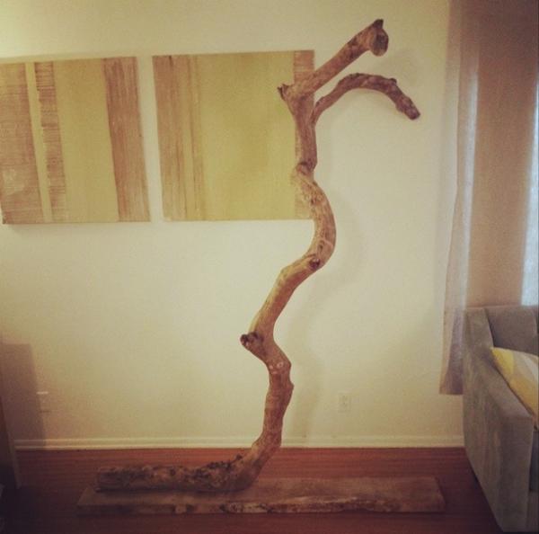 Ветвь дерева прикреплена к доске