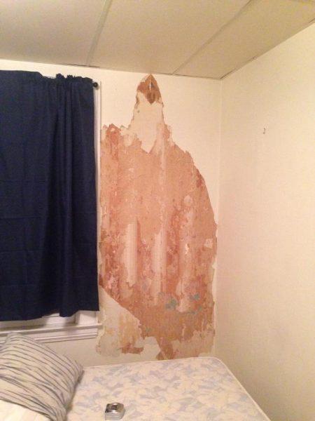 Стена в комнате с обдёртыми обоями