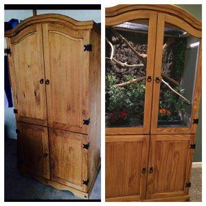 Старый шкаф и домашний террариум