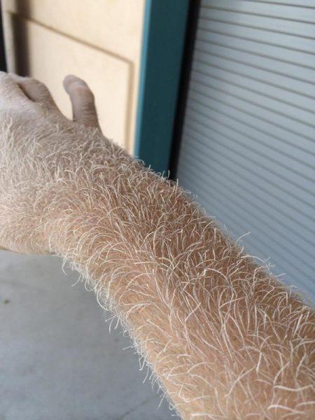 На волосах руки древесный опилок